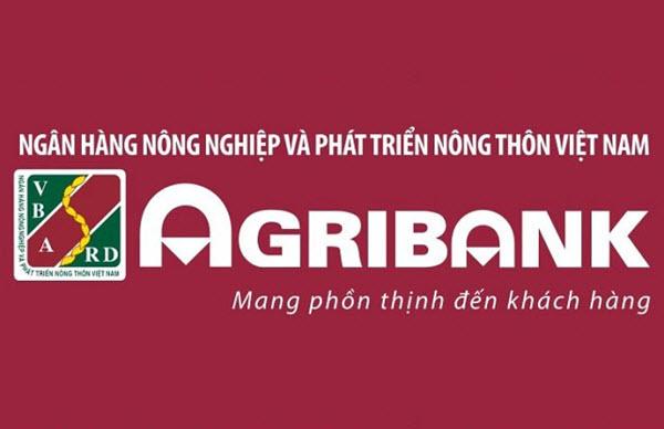 Vay tiền ngân hàng Agribank, 300 triệu, trong vòng 5 năm